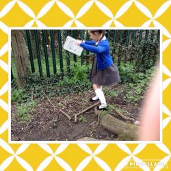 Outdoor Learning – Maths